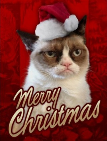 grumpy-cat-christmas-04