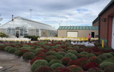 Greenhouse Set to Open Soon