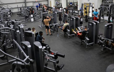 Hitting the Gym: Tips and My Experience