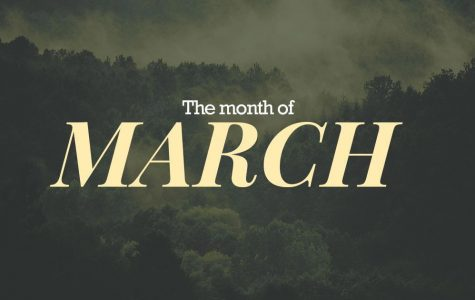 In Case You Missed It (March)
