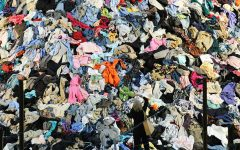 Fast Fashion: What it is, Its Impact, and the Dangers